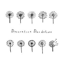 Set of abstract graphic doodle dandelions. Decorative Elements for design, dandelions