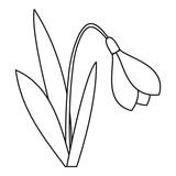 Bell flower icon. Outline illustration of bell flower vector icon for web