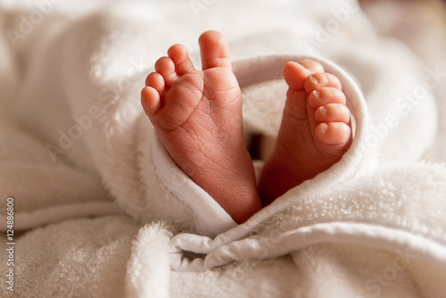 Bare feet of a cute newborn baby in warm white blanket Poster