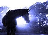 Image of a magical unicorn against hazy sunrise with sun rays in blue tone