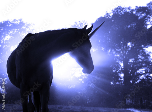 Aluminium Zonsopgang Image of a magical unicorn against hazy sunrise with sun rays in blue tone