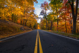 Fototapety Autumn in bear mountain New York. View of an empty road between the fall golden foliage