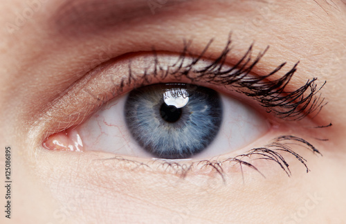 Macro shot of human eye and eyelid with red veins. Concept of eye disease, surgery and correction.  - 125086895