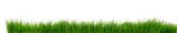 Gras Wiese Rasen - 125098425