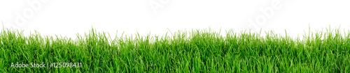 Foto Murales Gras Wiese Rasen