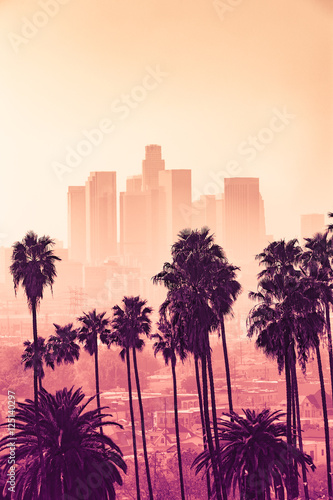 Foto Murales Los Angeles skyline with palm trees in the foreground