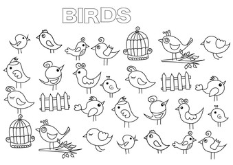 Hand drawn birds set. Coloring book page template.  Outline doodle vector illustration.