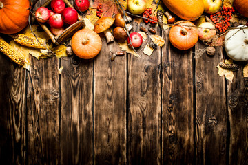 Autumn fruits and vegetables.