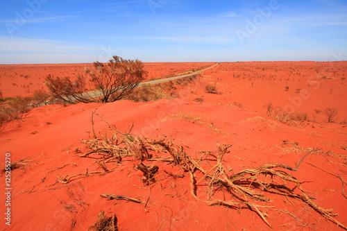 Foto op Canvas Baksteen Australian endless outback road