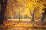 Colorful tree alley with row of lanterns in the autumn park on a sunny day in Krakow, Poland