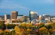 Autumn trees and the skyline of Boise Idaho