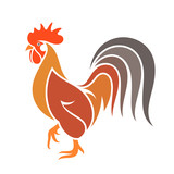 Abstract  rooster. Colorful bird on white background - 125403882