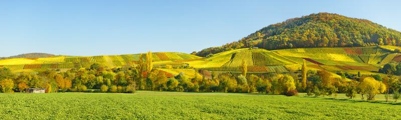 Fototapeta zielony krajobraz panorama