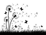 Dandelions with butterflies.  - 125456460