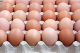 Chicken brown eggs in packing , the top view.