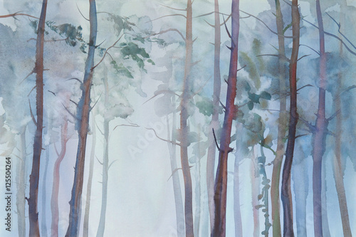 Fototapeta Foggy forest watercolor background
