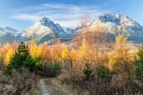Autumn in rocky mountains High Tatras, Slovakia