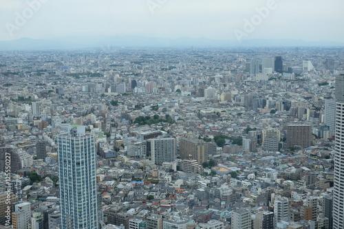 Plagát, Obraz 東京の街