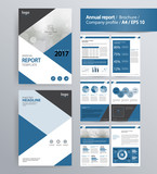page layout for company profile, annual report, brochure, and flyer layout template. with info graphic element. and vector A4 size  for editable   - 125562627
