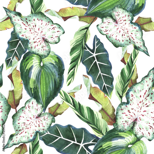 Cotton fabric Tropical Hawaii leaves palm tree pattern in a watercolor style isolated.