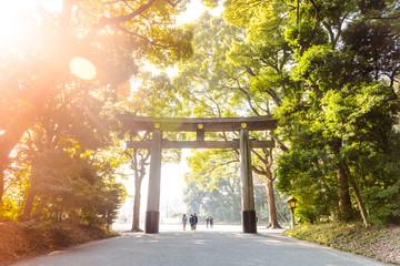 Torii in Yoyogi Park. Tokio. Japan