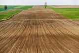 Gołe pole na wiosnę  - 125636264