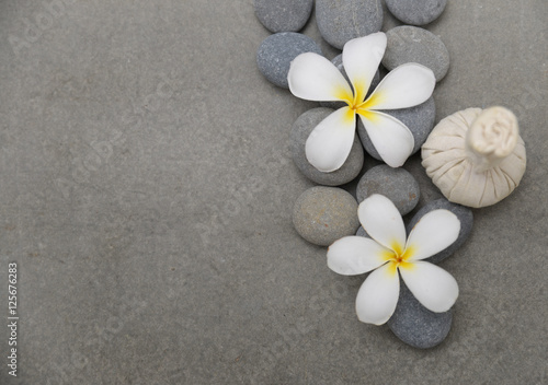 Poster Spa spa theme objects with flower and Herb ball grey background.
