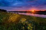 Summer sunset landscape with a river and yellow flowers - 125676686