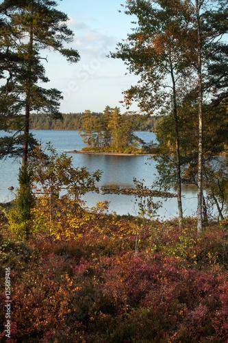 Blick vom Naturschutzgebiet Braas Park auf den See Örken, Smaland, Schweden Poster