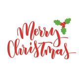 Merry Christmas hand written inscription - 125692619