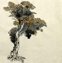 par exemple le dessin d'arbre