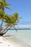 Tropical beach, lagoon, Polynesia - 125752829