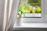 Bouquet of tulips on windowsill
