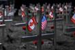 Remembrance / Veteran's Day Memorial