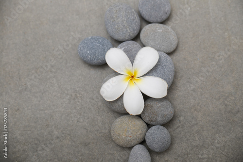 Poster Spa spa theme objects on grey background.