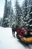 Horse drwan Kulig