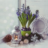 Winter window with hyacinth. Tonal stylisation