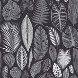 Vector seamless vintage floral pattern. Exotic leaves. Botanical classic illustration. Black and white