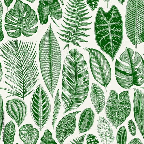 Materiał do szycia Vector seamless vintage floral pattern. Exotic leaves. Botanical classic illustration. Green