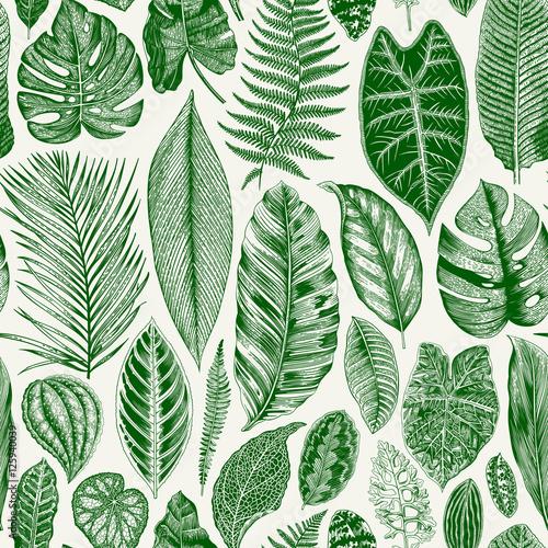 Materiał do szycia Wektor vintage kwiatowy wzór. Egzotyczne liści. Botaniczny ilustracja klasyk. Zielony