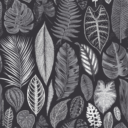Vector seamless vintage floral pattern. Exotic leaves. Botanical classic illustration. Black and white - 125940061