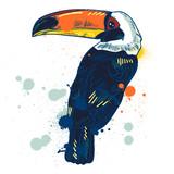 Toucan, Vector hand drawn illustration - 125984204