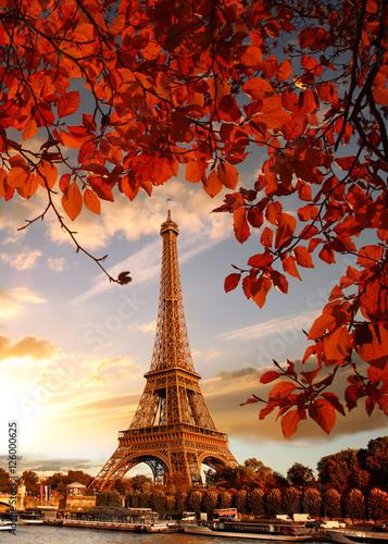Zdjęcia na płótnie, fototapety na wymiar, obrazy na ścianę : Eiffel Tower with autumn leaves in Paris, France