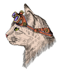 portrait steampunk cat with yellow eyes and retro glasses, in etching style.