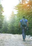 Doğada yürüyüş / Trekking