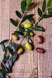 Olive verdi con ramoscello