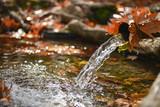 çeşme suları ve sonbahar konsepti