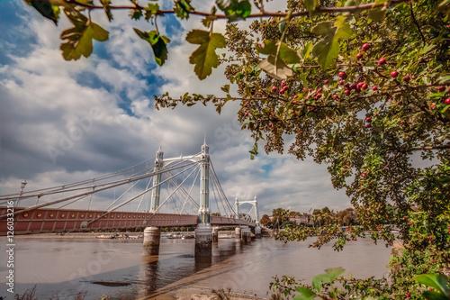 Poster Chelsea Bridge in autumn