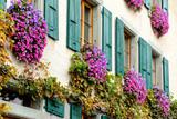 Finestre fiorite a Lavaux