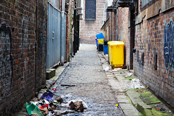 Wheelie bins in a garbage strewn alleyway © sas